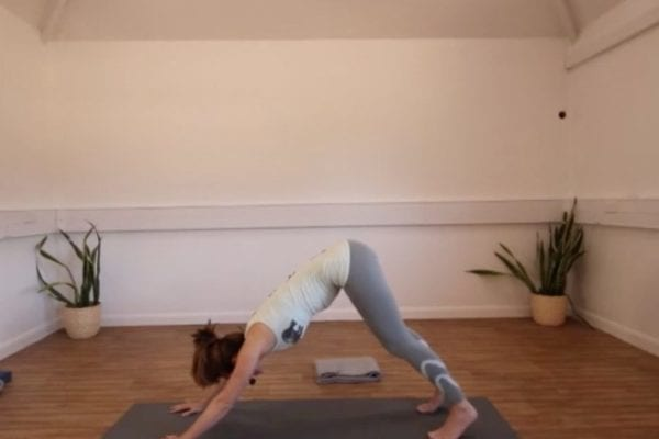 Noticing Rebound Open Flow Yoga YATB